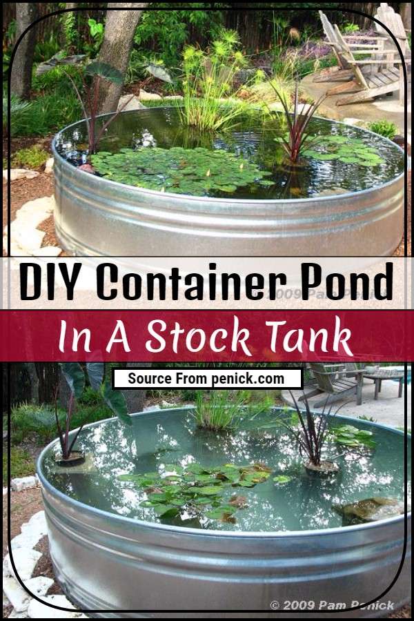 DIY Container Pond In A Stock Tank