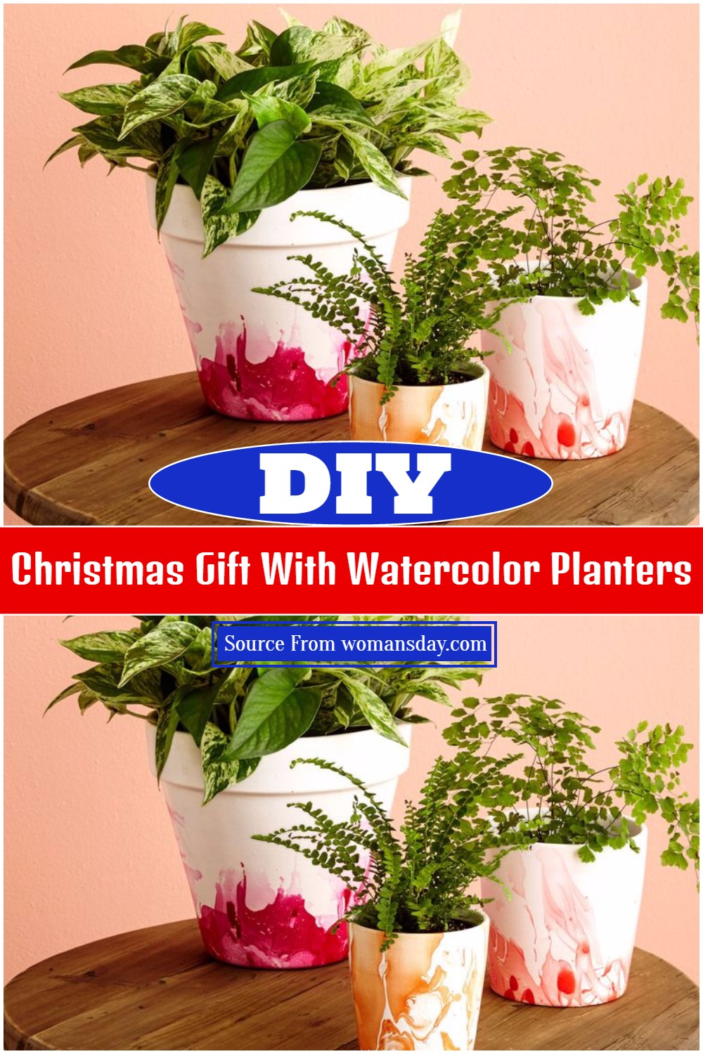 Christmas Gift With DIY Watercolor Planters