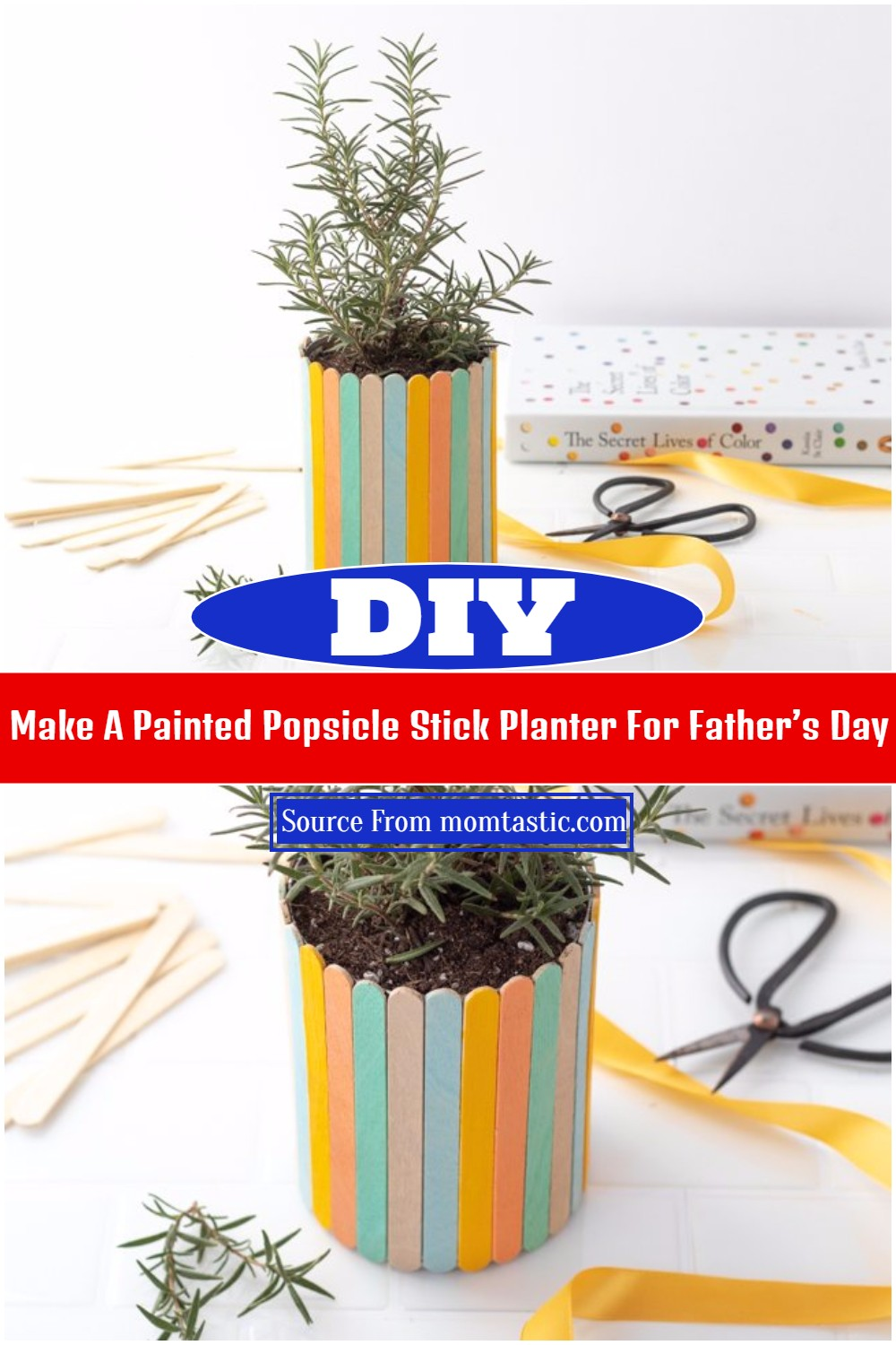 Make A Painted DIY Popsicle Stick Planter For Father's Day