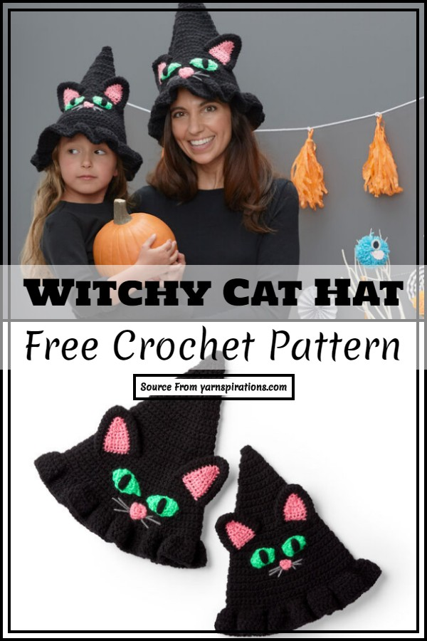 Crochet Witchy Cat Hat