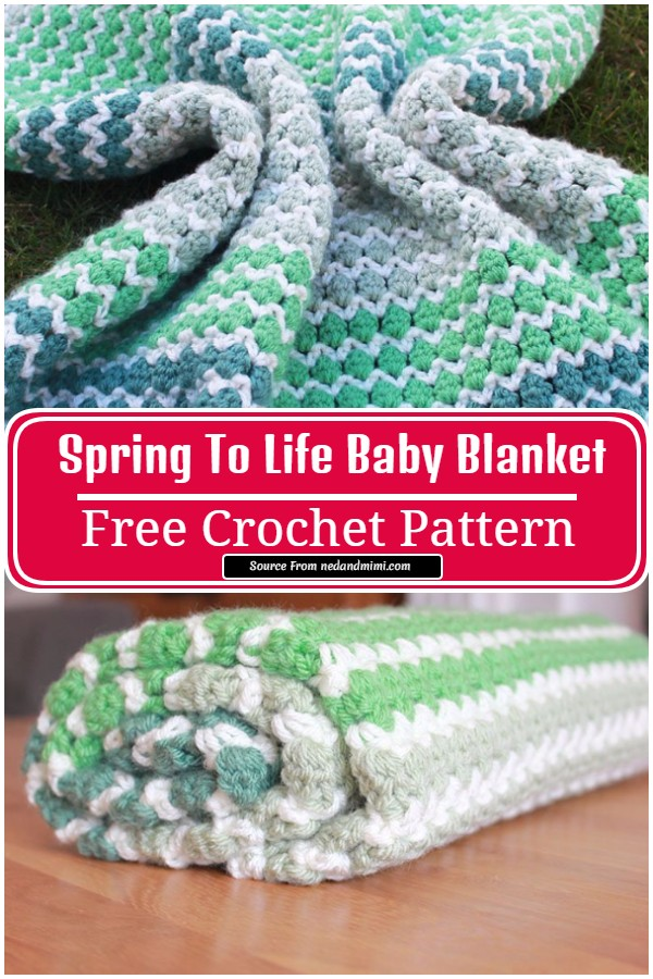 Free Crochet Spring To Life Baby Blanket
