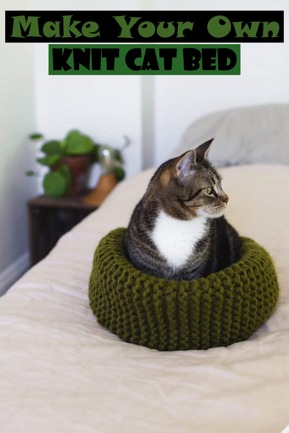 Make Your Own Knit Cat Bed