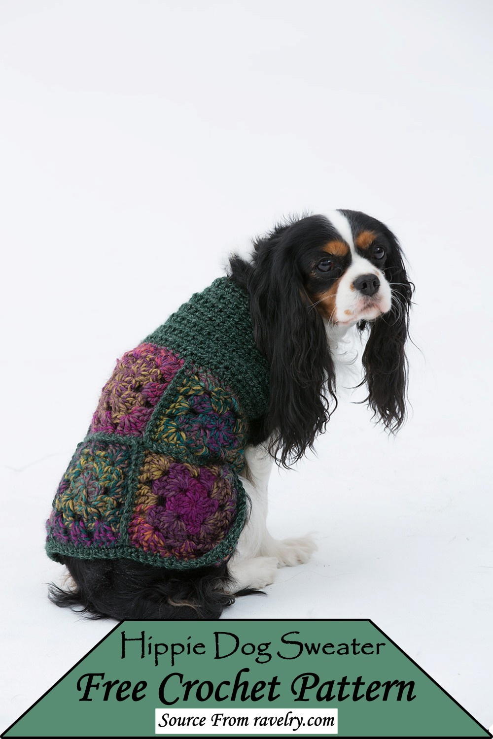 Hippie Sweater Pattern for your puppy