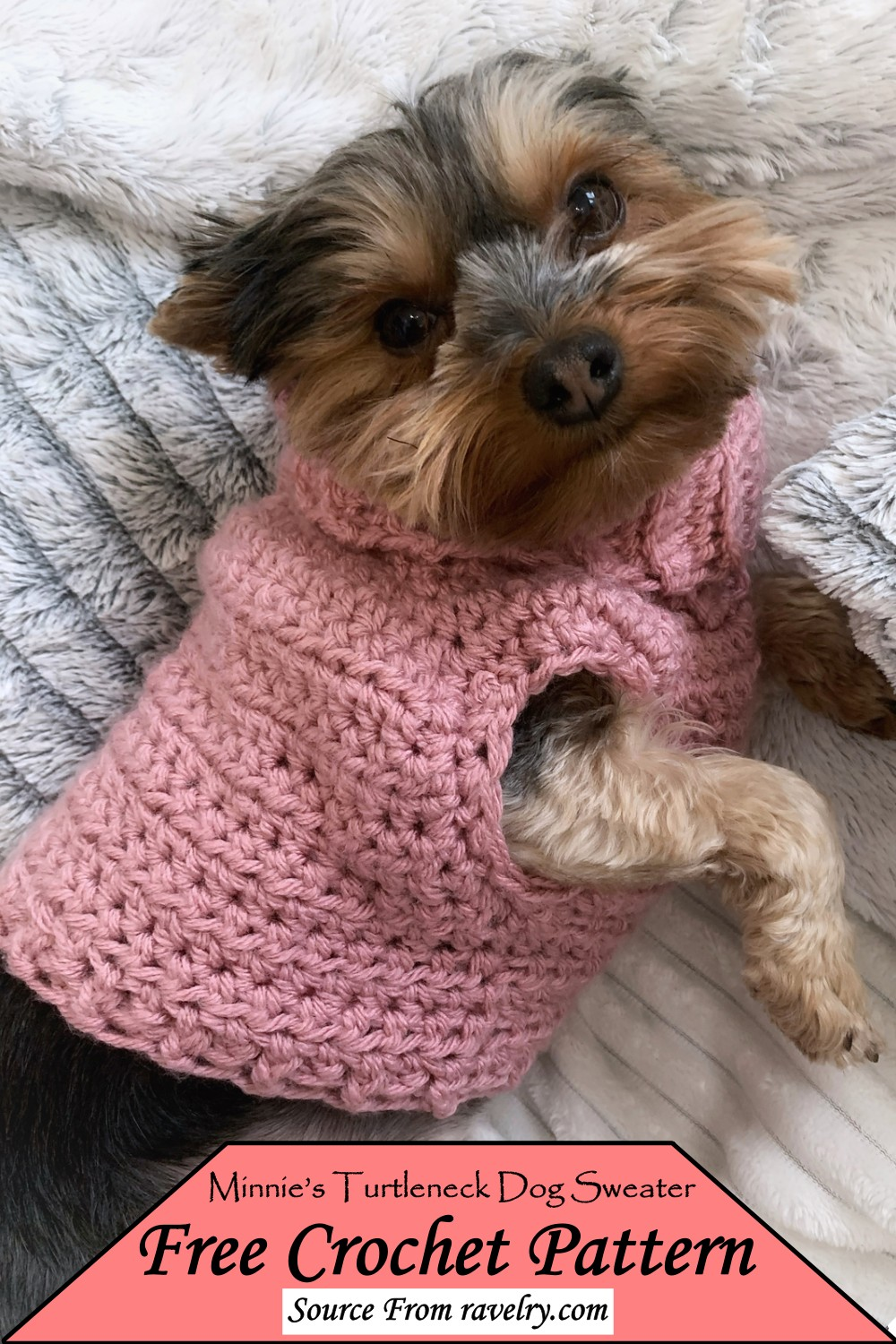 Minnie's Turtleneck Sweater Pattern for your puppy