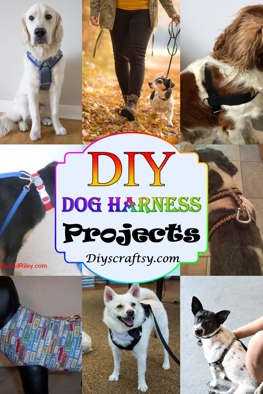 DIY Dog Harness Projects 1