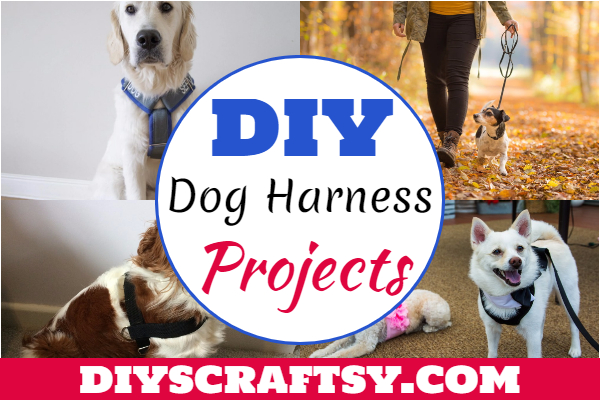 DIY Dog Harness Projects