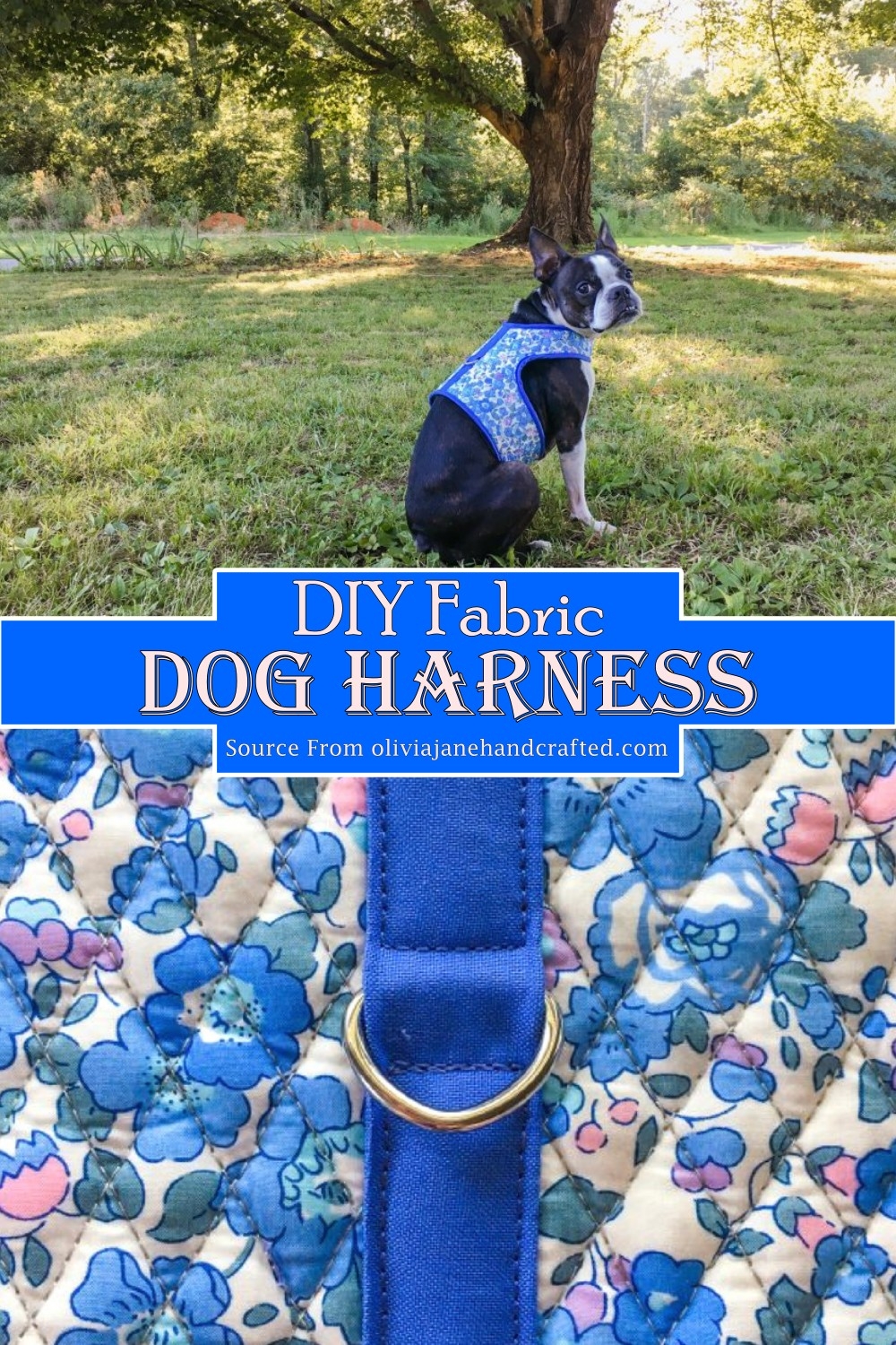 Fabric Harness for your pooch