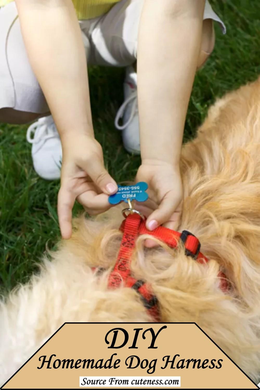 DIY Homemade Dog Harness