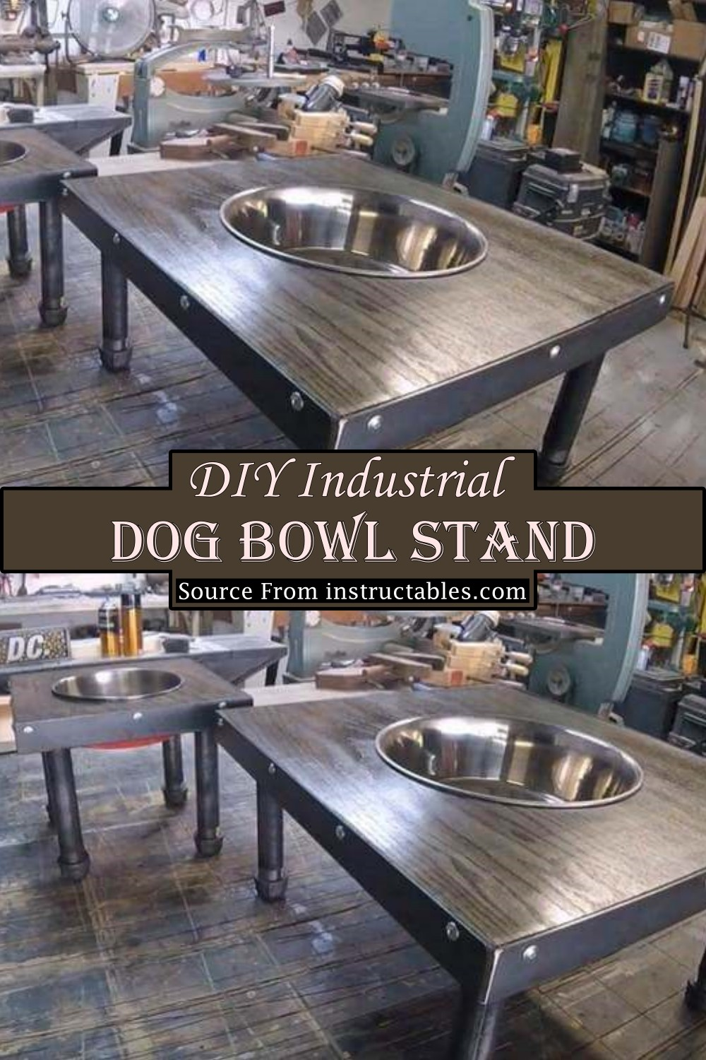 Industrial Stand To feed your Canine friend