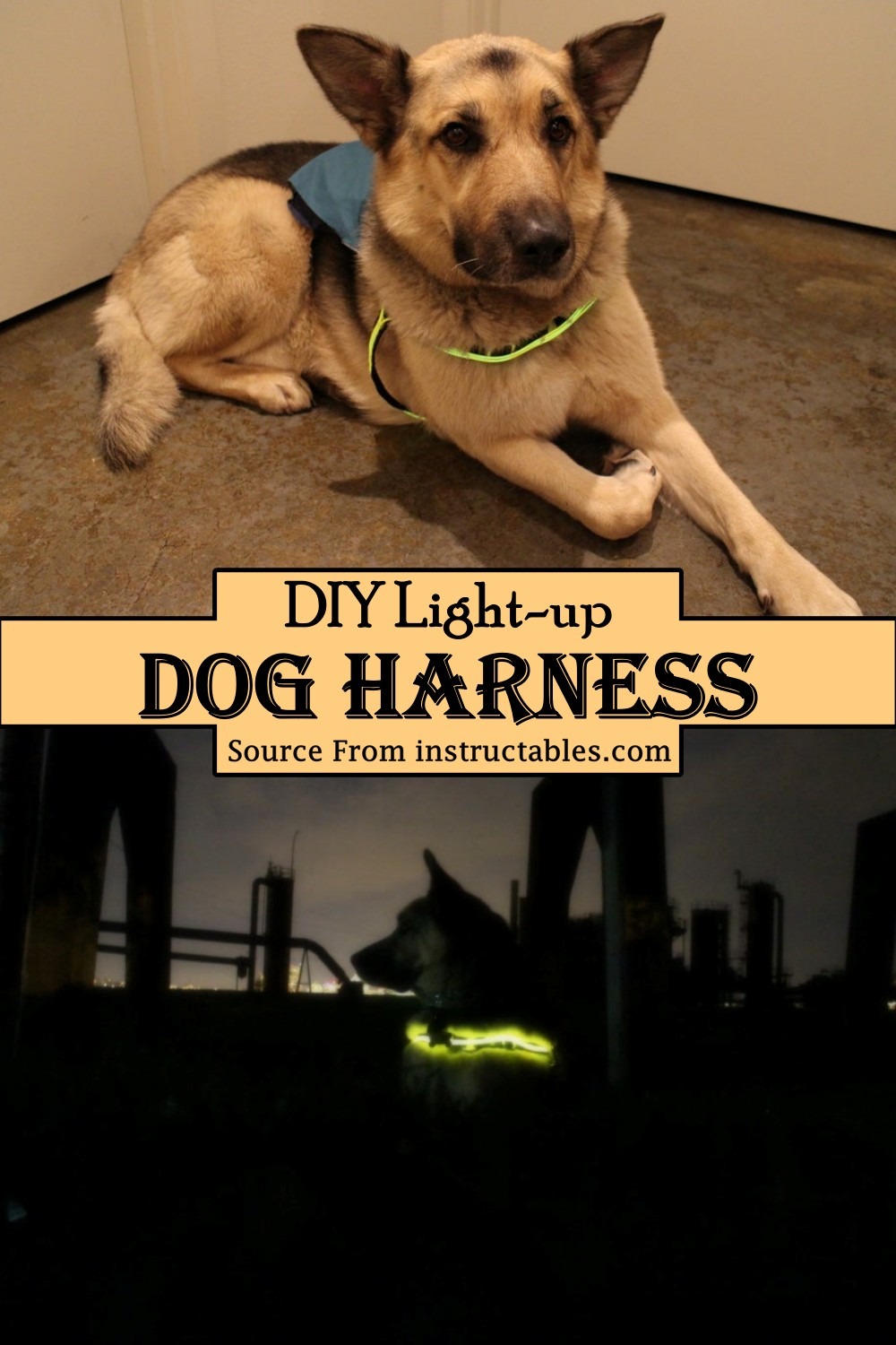 Light-up Harness for your pooch