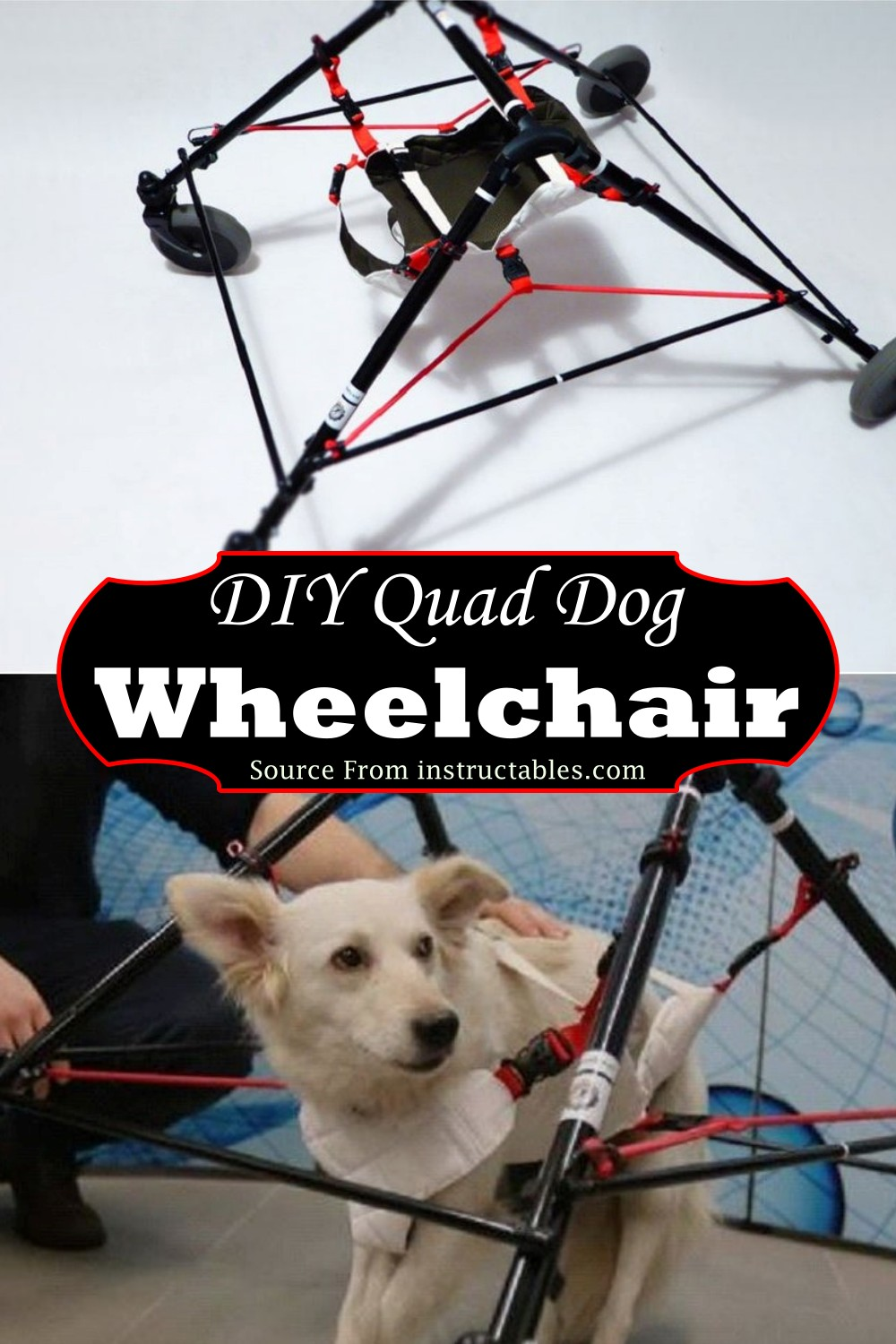 Quad Wheelchair for your canine