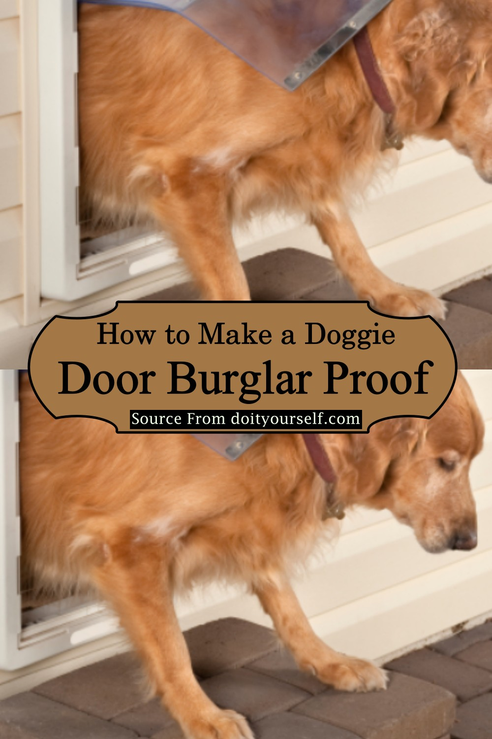 How To Build A Large Dog Door