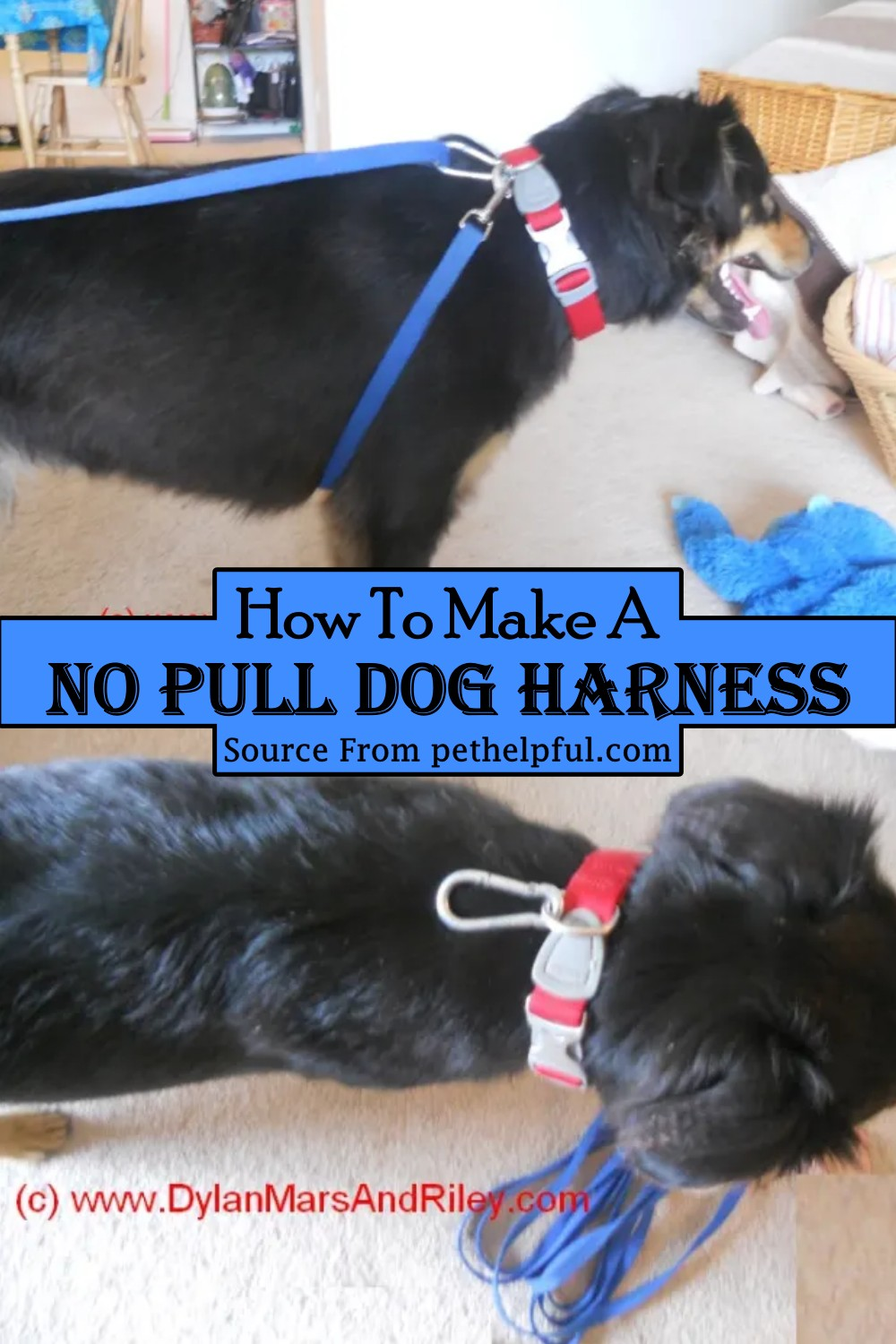 How To Make A No Pull Dog Harness