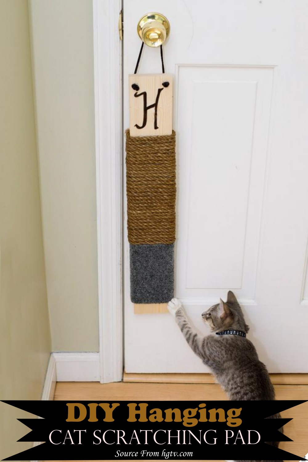 Hanging Pad for your feline friend
