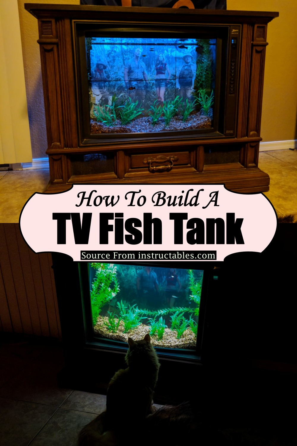 How To Build A TV Fish Tank