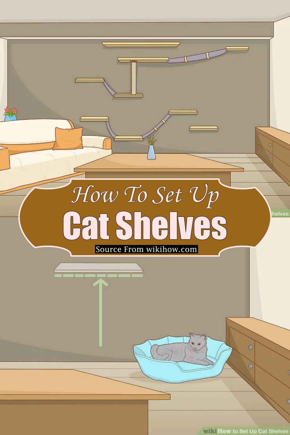 How To Set Up Cat Shelves
