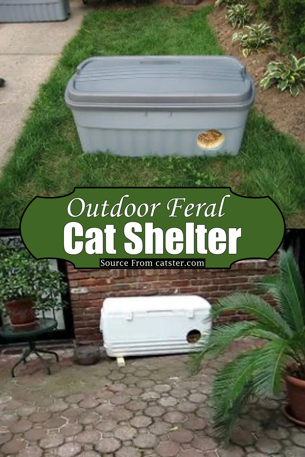 Outdoor Feral Cat Shelter