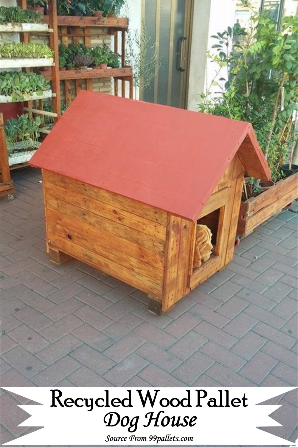 Recycled Wood Pallet House for your canine friend